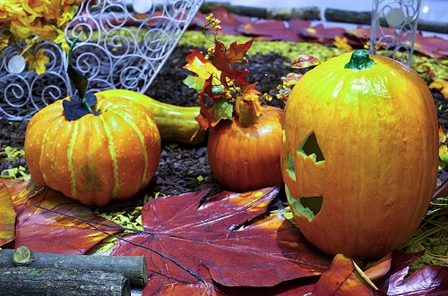 Halloween: Candy, costumes, and more!