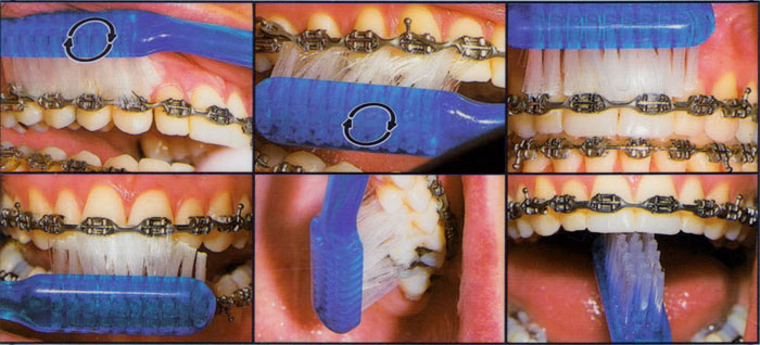 Ontario College Of Oral Health Care Ajax 31